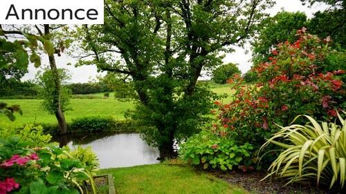 3 gode råd til fornyelse i din have