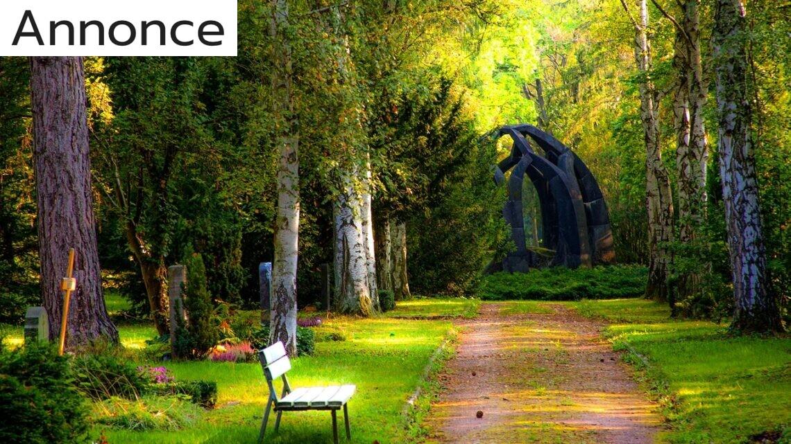 Få anlagt din drømmehave og nyd din nye have til fulde